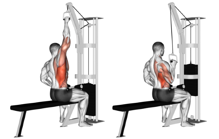 Cable One Arm Lateral Pulldown