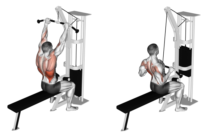 Cable Bar Lateral Pulldown (wide shoulder grip)