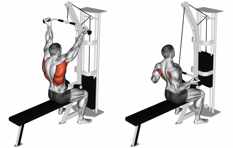 Cable Bar Lateral Pulldown (reverse-grip)