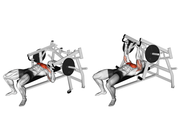 Lever Lying Chest Press
