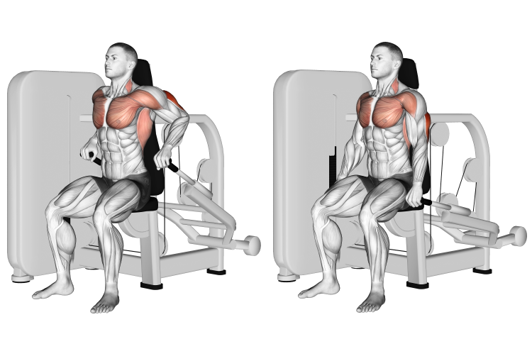 Lever Seated Dips