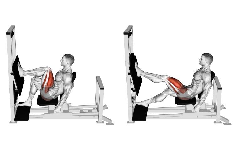 Lever Horizontal Leg Press
