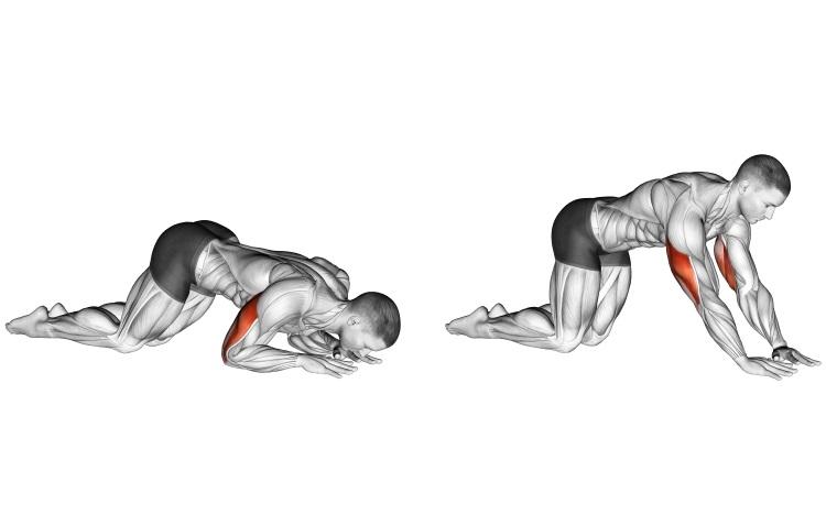 Stretching - Kneeling Triceps Extension
