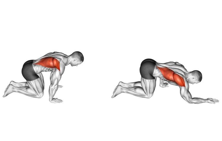 Stretching - Kneeling Lat Stretch