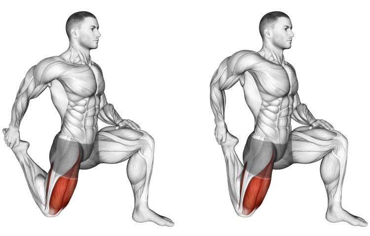 Stretching - Quadriceps stretch