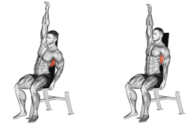 Stretching - Seated Lower Back Stretch