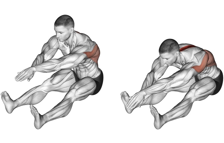 Stretching - Sitting Bent Over Back Stretch
