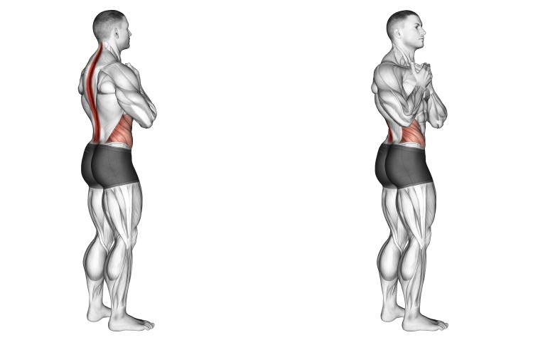 Stretching - Standing Back Rotation Stretch
