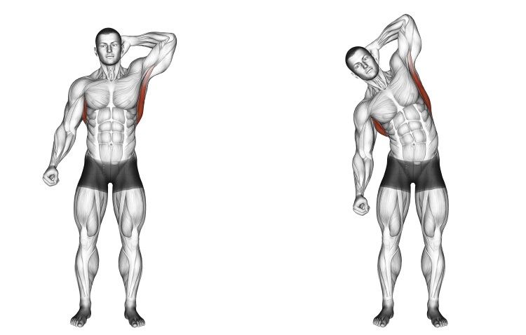 Stretching - Standing Lateral Stretch