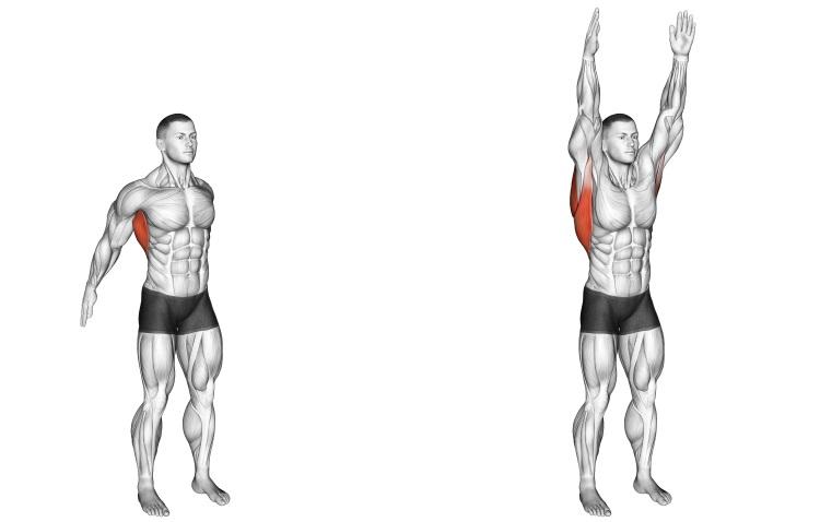 Stretching - Dynamic Back Stretch