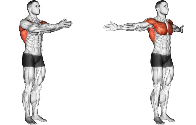 Stretching - Dynamic Chest Stretch