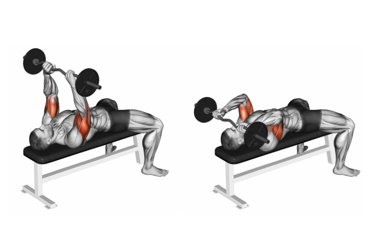 EZ Barbell Lying Triceps Extension