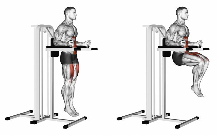 Vertical Leg Raise (on parallel bars)