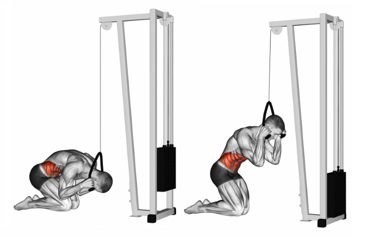 Cable Kneeling Crunch