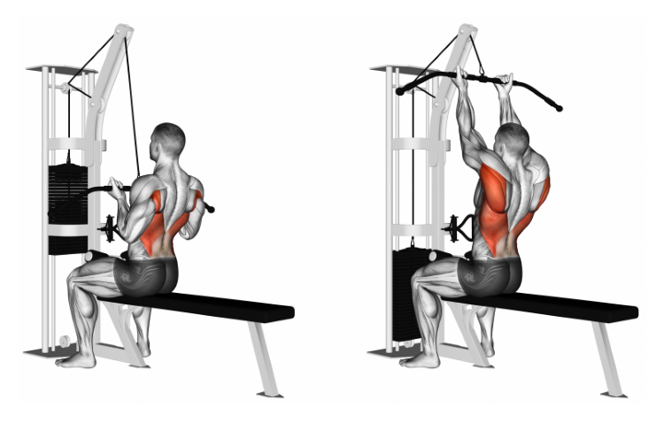 Cable Straight Back Seated High Row (reverse-grip)
