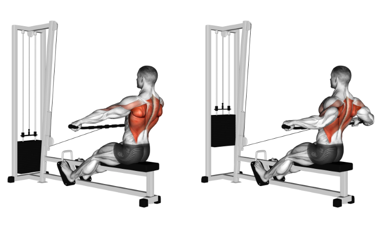 Cable Seated Row (wide-grip)
