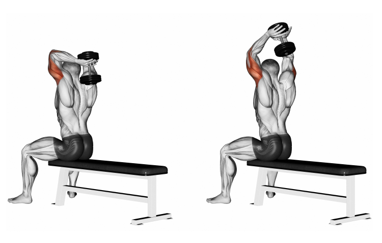 Dumbbell Seated Triceps Extension