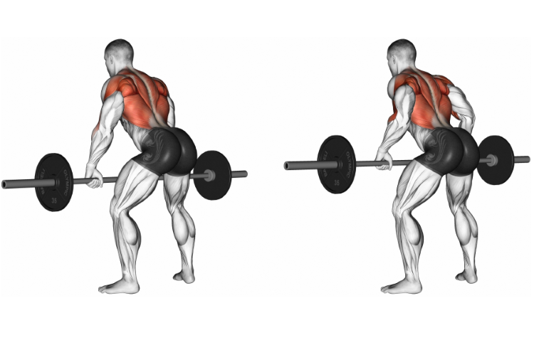 Barbell Bent-over Row Overgrip