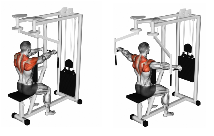 Lever Seated Reverse Fly
